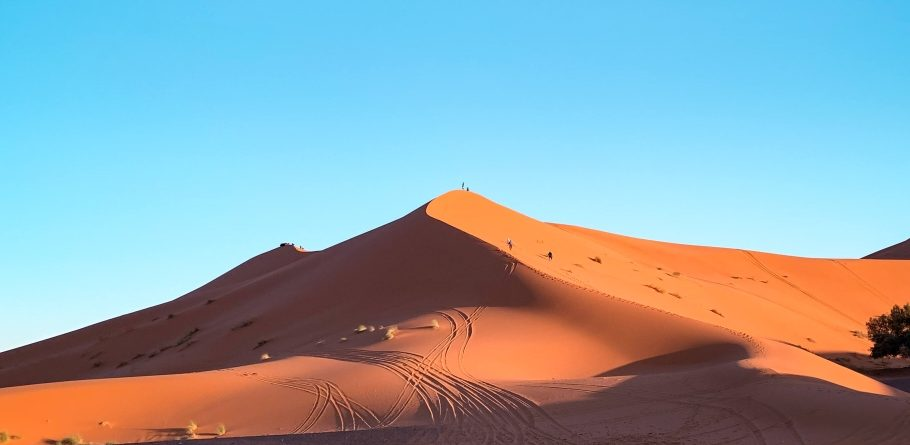 Clear blue sky and Erg Chebbi sand dunes of the Sahara desert in sunset light