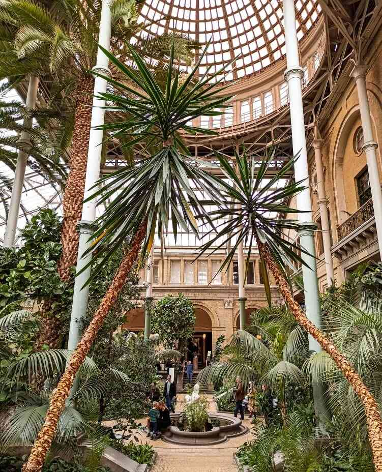 The lush and tropical Winter Garden of Glyptoteket, one of the best Copenhagen hidden gems