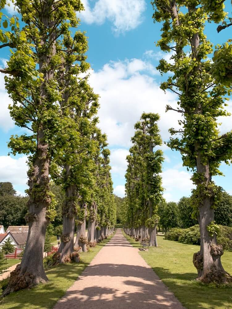 Pathways in the Baroque garden of Frederiksborg Castle