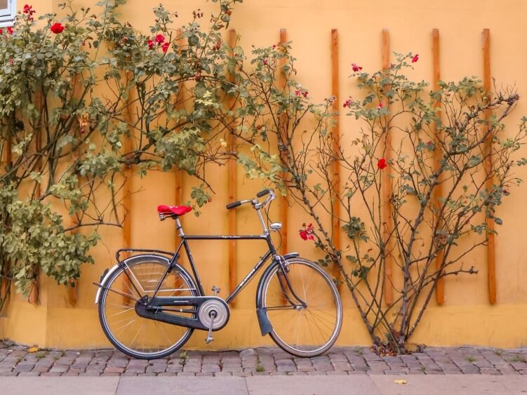 A bike parked in front of a bright yellow wall and bushes with blooming flowers