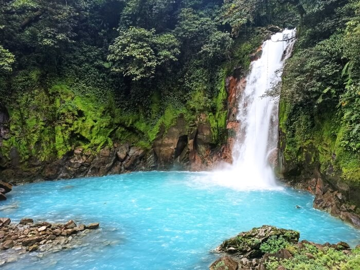 Bright blue Rio Celeste waterfall surrounded by green mossy cliffs and lush foliage