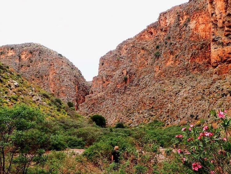 The orange cliffs and green vegetation of Zakros gorge aka the Gorge of the Dead on the E4 hiking trail on Crete island
