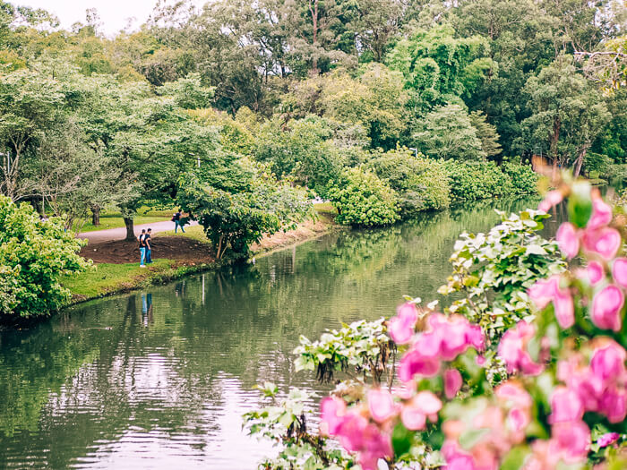 Admiring the lush green nature of Ibirapuera Park is one of the top things to do in Sao Paulo