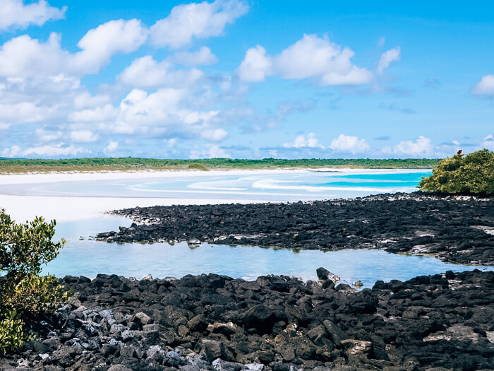 White sand and black lava rocks of Tortuga Bay, one of the best beaches on Galapagos Islands, Ecuador.