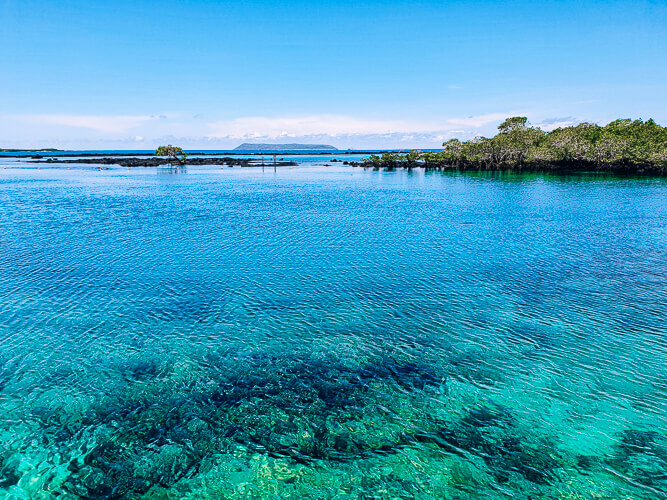 bright blue water at Concha de Perla natural pool, one of the best places for snorkeling in Galapagos