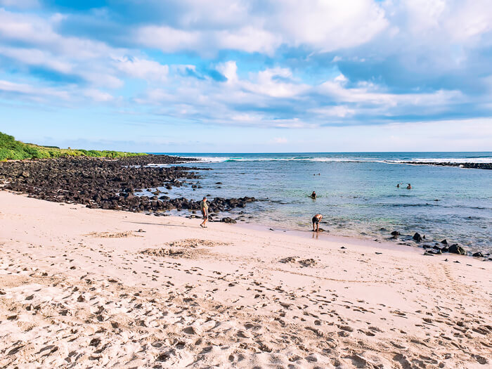 Snorkeling at Playa La Loberia at San Cristobal Island is among the top Galapagos land based tours to take if you're traveling on a budget.