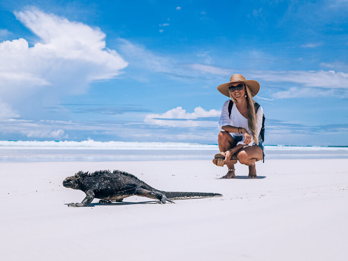 A girl looking at a black marine iguana on the white sand at Tortuga Bay, one of the best places to see in Galapagos