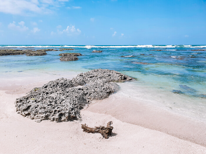 Natural pools made of rocks and coral reefs on Isla Colon, one of the best places to visit in Bocas del Toro