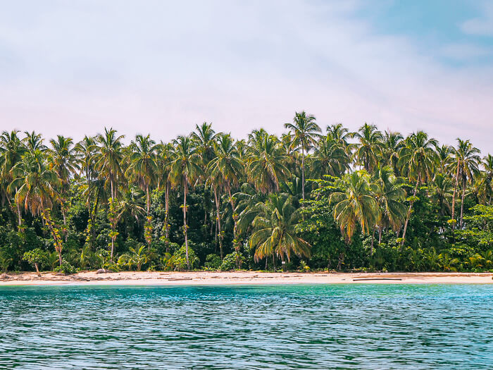 A row of palm trees, a strip of white sand and the bright blue Caribbean Sea at Zapatilla Island, Panama.
