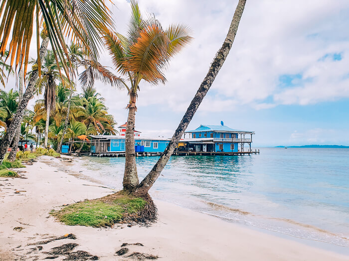 White sand, calm waters and a leaning palm tree on Isla Carenero, one of the top Bocas del Toro beaches due to its proximity to Bocas Town.