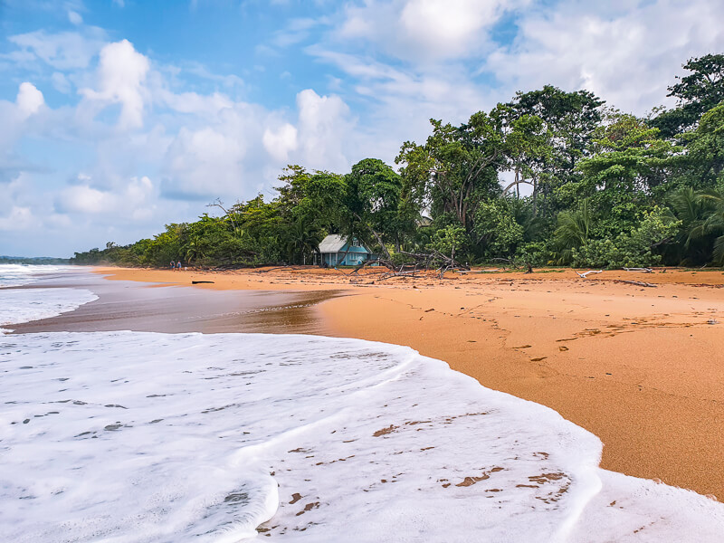 Foamy sea, green vegetation and orange sand at Playa Bluff which is certainly among the best beaches in Bocas del Toro.