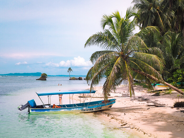 A taxi boat parked under a leaning palm tree in Cayo Zapatilla, one of the best beaches in Panama.