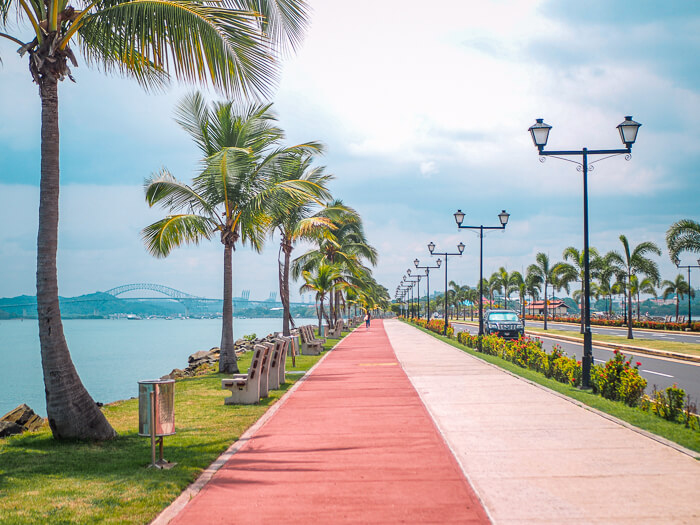 Strolling along the palm-tree lined walkway of Amador Causeway is one of the best things to do in Panama City
