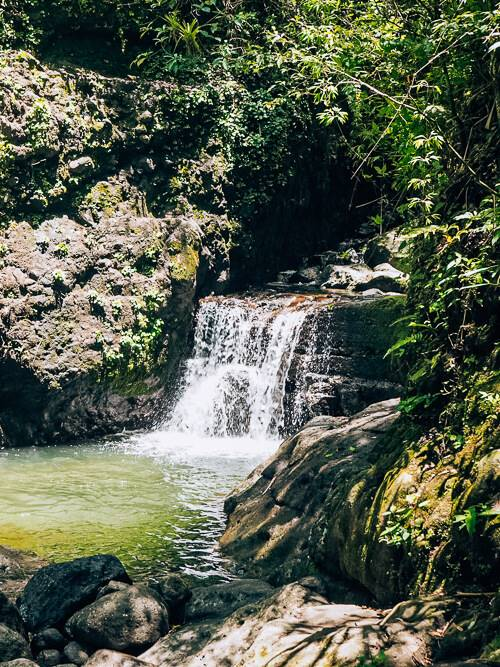 a small waterfall and a natural pool surrounded by rainforest in Panama