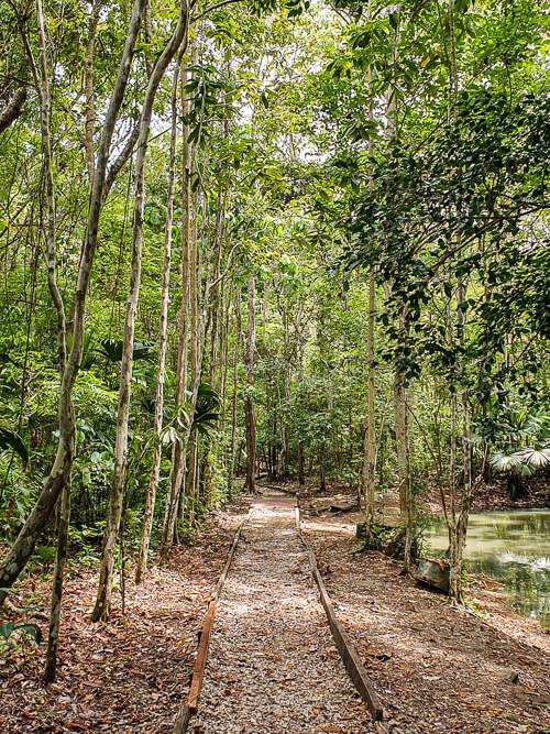 a walking trail in Metropolitan Natural Park, a great place for hiking and spotting exotic wildlife