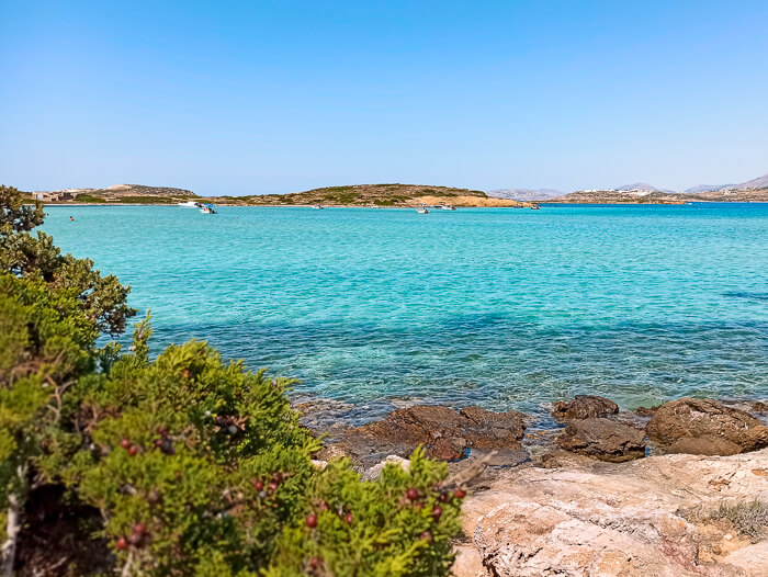 Vivid turquoise water of Antiparos Camping Beach, surely one of the best beaches in Antiparos Island, Greece